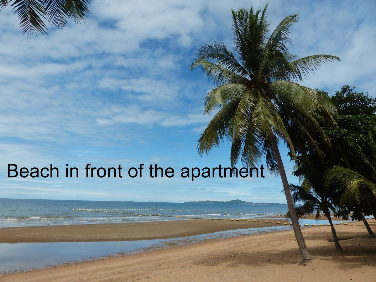 Studio, 43 sqm, Jomtien Beachfront, Pattaya - Condominium - Jomtien Beach -