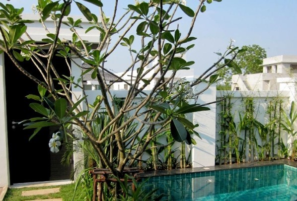 Villa in Jomtien - House - Jomtien -