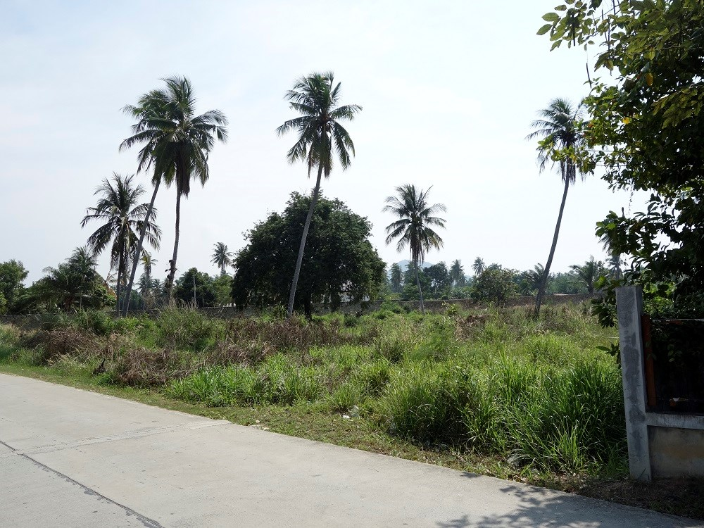 10 Rai for sale, Bang Saray - Land - Bang Saray -
